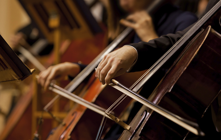 a cropped picture showing the hand of someone playing the cello